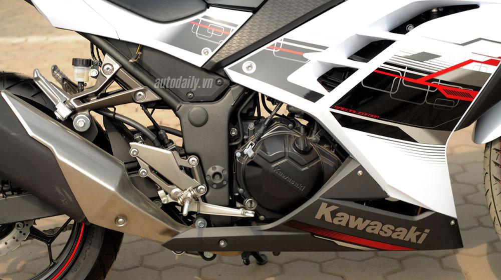 Kawasaki Ninja 300 ABS (19).jpg